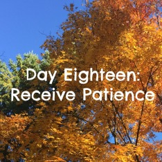 Day Eighteen.jpg