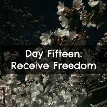 Day Fifteen.jpg